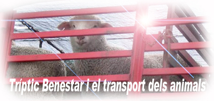 Tríptic el benestar i el transport dels animals