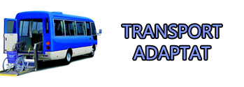 LOGO TRANSPORT ADAPTAT.jpg